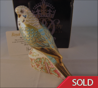 Royal Crown Derby Paperweight -  Sky Blue Budgerigar